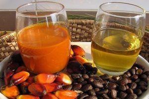 palm oil and kernels