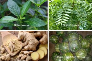 African herbs for COVID-19 cure